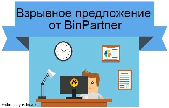 предложение от BinPartner