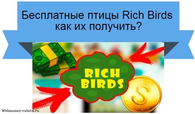 Бесплатные птицы Rich Birds