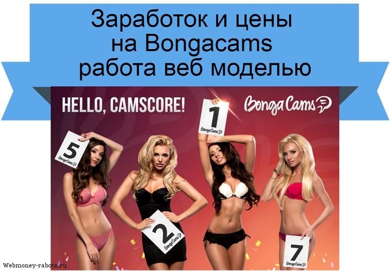 Заработок и цены на Bongacams
