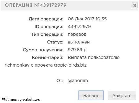 Игровой сайт для заработка Tropic Birds (без вложений и баллов)